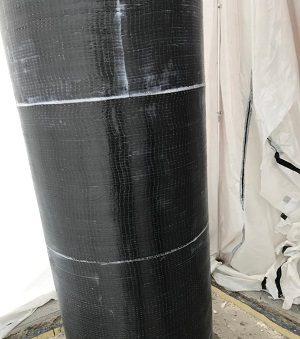 Asticus Column 2