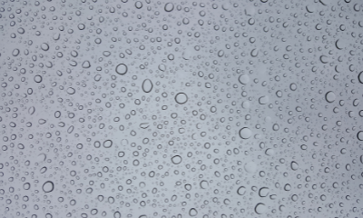 Hydrophobic & Hydrophilic: What's the Difference?